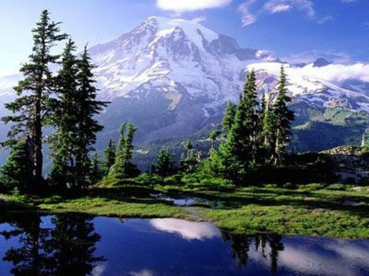 Natura La Migliore Fonte Di Benessere Tanta Salute