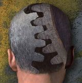 cervello paura amigdala