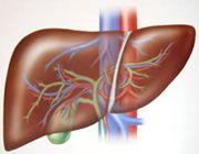 fegato danneggiato sostanze