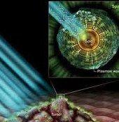 Impulsi magnetici eliminano le cellule tumorali