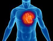 malattie coronariche testosterone