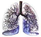 Malattie polmonari croniche, terme molto utili