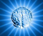 cervello carburante memoria