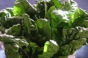 sostanza medicine verdure