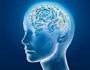 cervello futuro computer