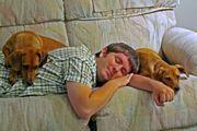 dormire con cani e gatti rischi salute