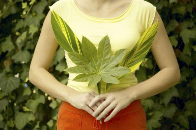 alimentazione corretta flora intestinale