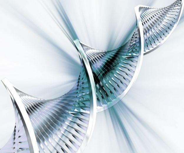 gene potenza muscolare