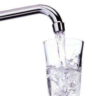 acqua elemento importante organismo
