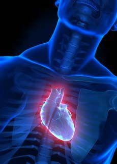 cuore temperature basse fatica fisica