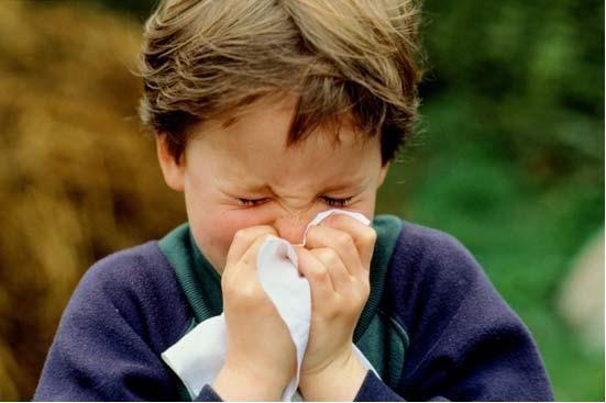 bambini allergie gravidanza
