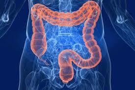 Malattie croniche intestinali in Italia