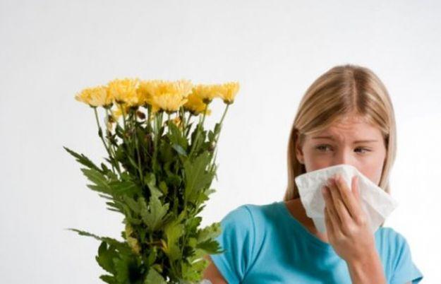 allergia pollini rimedi omeopatici
