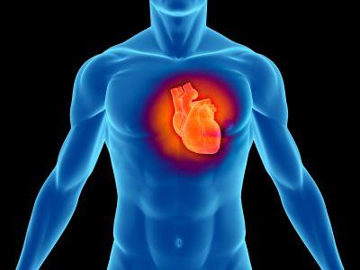 infarto proteggere cuore attivita fisica
