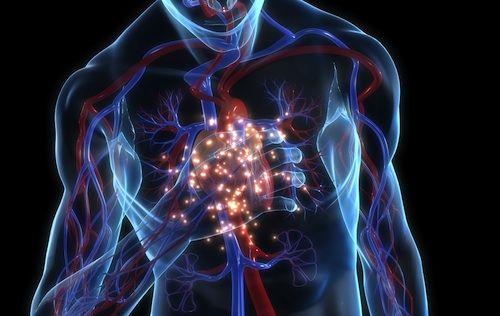 morte cardiaca improvvisa nello sport rimedi urgenti