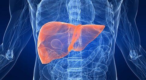 epatite autoimmune diagnosi terapia