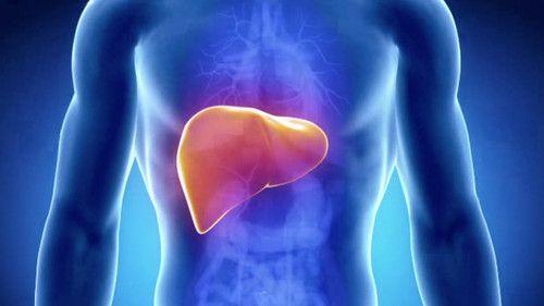 tumore al fegato sintomi cause cure