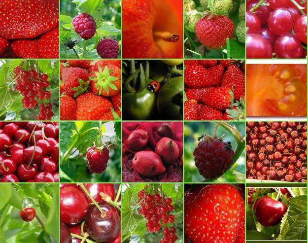 antiossidanti contro i tumori