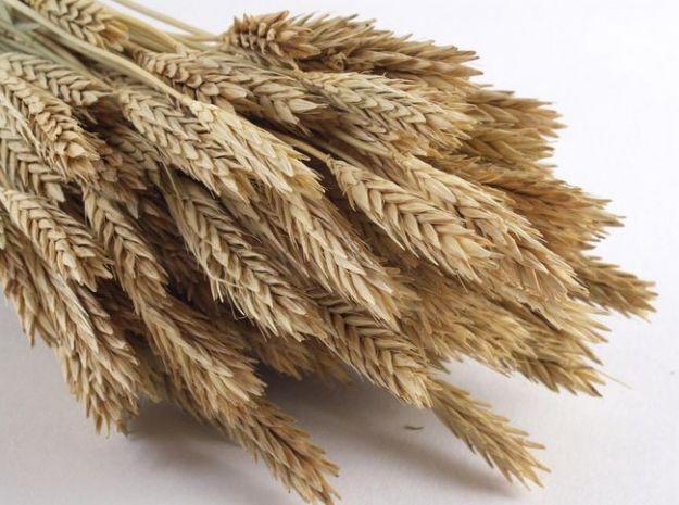 allergia al grano sintomi cosa mangiare