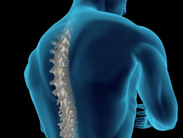 lesione midollare sintomi cause riabilitazione
