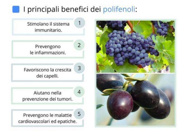 polifenoli benefici dove si trovano