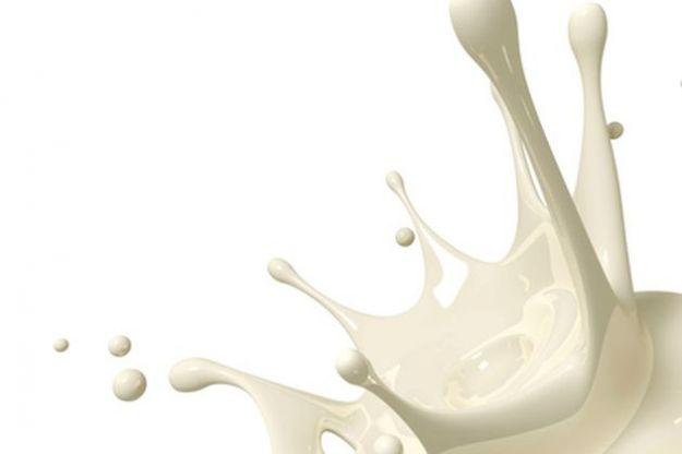 siero di latte proprieta valori nutrizionali