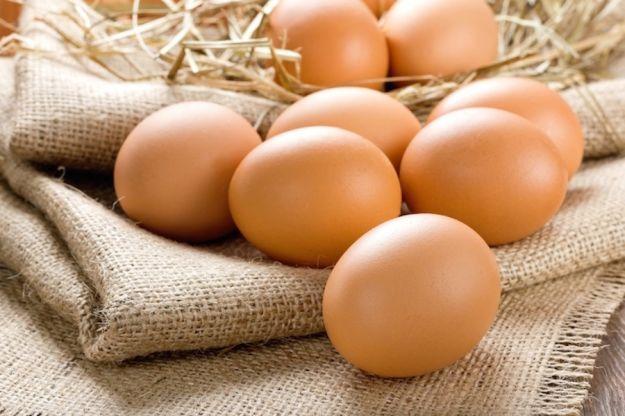 antibiotico uova terapia