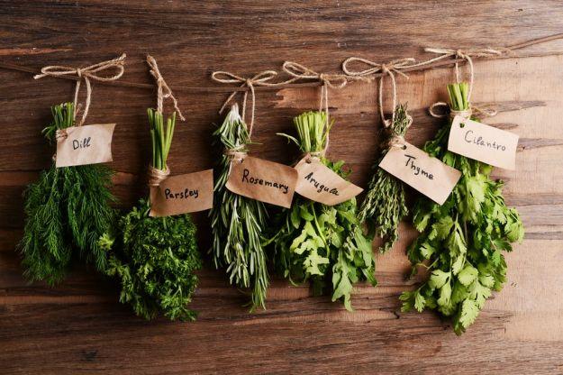 erbe aromatiche quiz