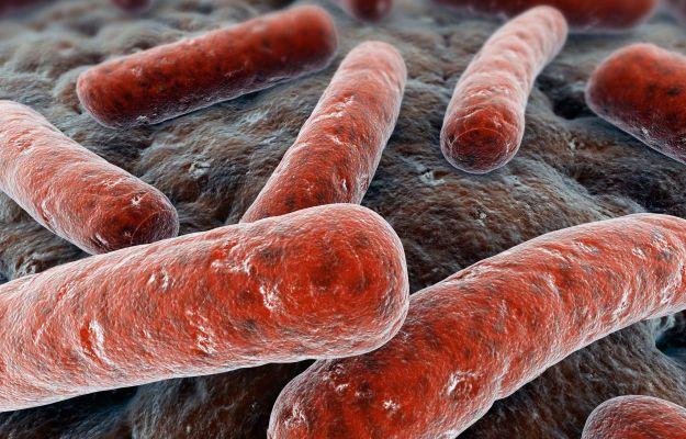 come si trasmette tubercolosi contagio sintomi cure