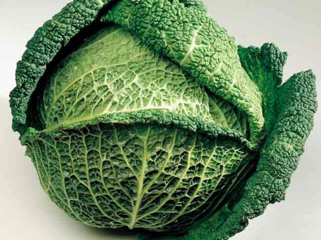 Verza verdure
