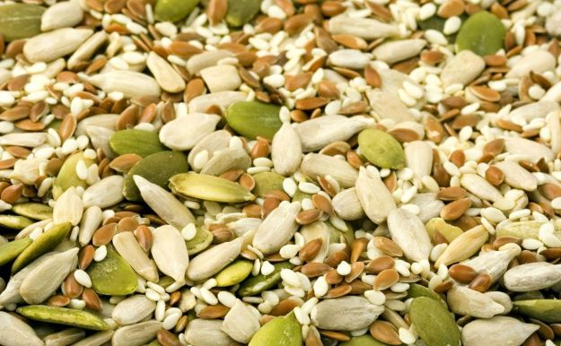 semi oleosi proprieta quali sono come consumarli