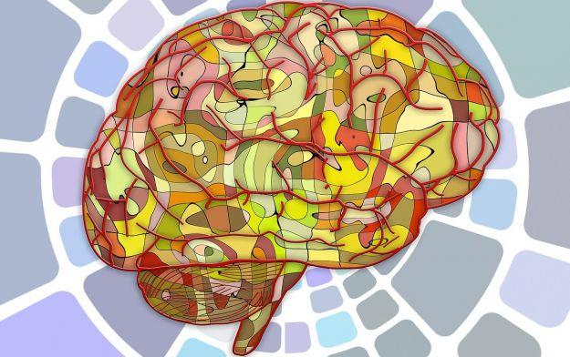 invecchiamento cerebrale sintomi cause rimedi