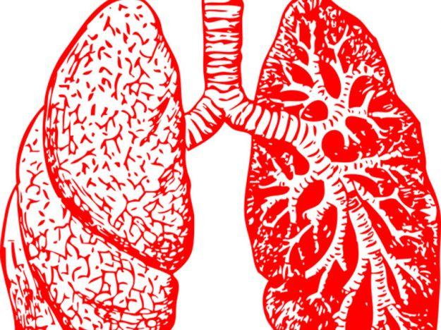 Polmoni respirazione