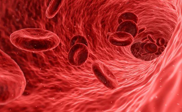 arterie ostruite sintomi rimedi naturali
