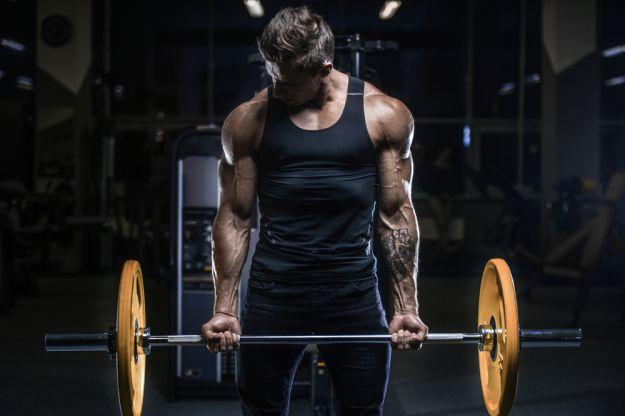 proteine palestra dieta integratori attivita fisica