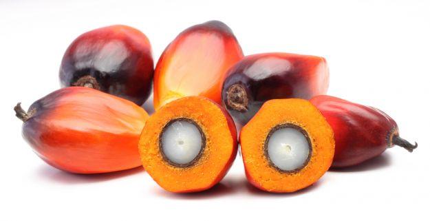 alimenti senza olio di palma