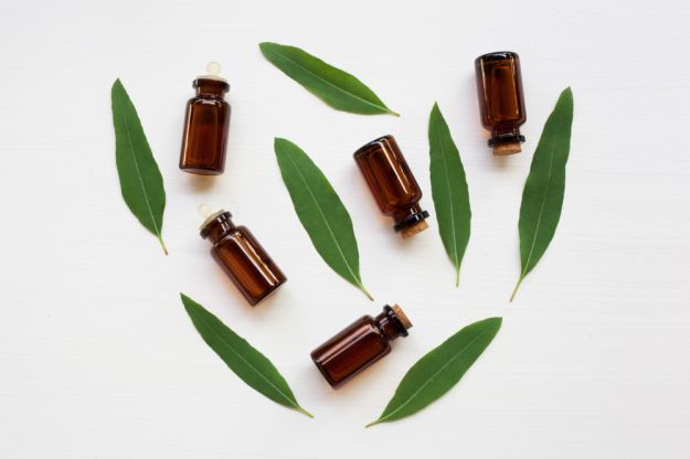 olio essenziale di eucalipto