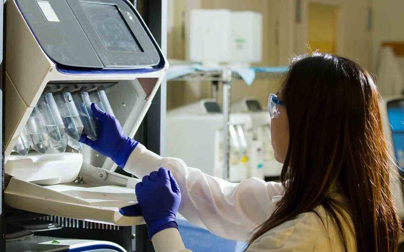 ricercatrice medico