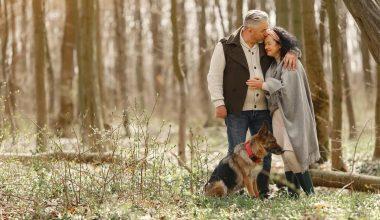 Alzheimer: avere un cane riduce l'isolamento sociale